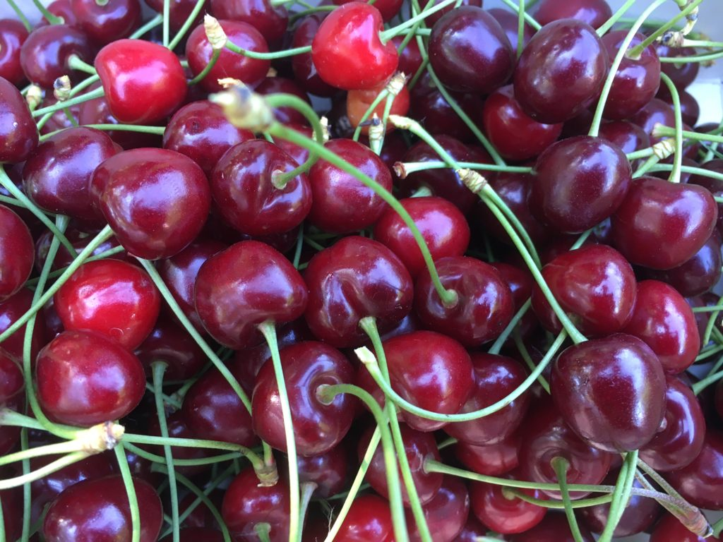 Torta di ciliegie fresche ricetta originale