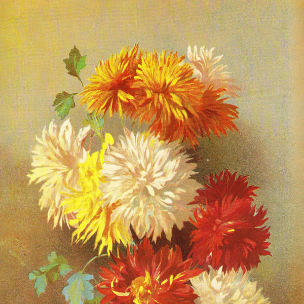 Un dipinto che ritrae un mazzo di crisantemi
